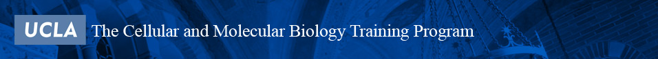 Cellular and Molecular Biology Training Program